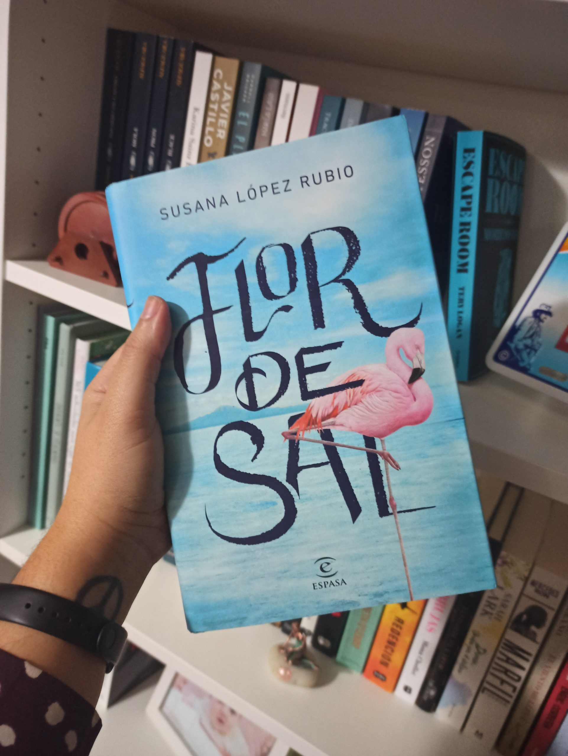 FLOR DE SAL, de Susana López Rubio.
