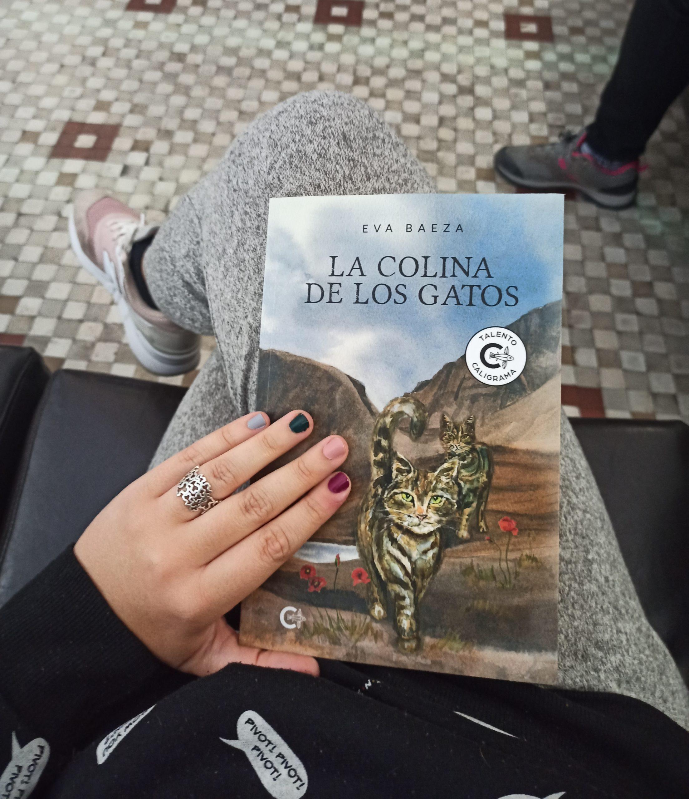 LA COLINA DE LOS GATOS, de Eva Baeza.